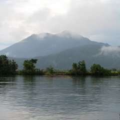 Go crocodile spotting in the Daintree River is stunning Tropical North Queensland Australia