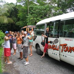 Go Wild Go Troppo or go get lost for 2 days in the Daintree Cape Tribulation Rainforests of Australia with your mates
