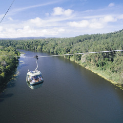 Skyrail Gondola suspended over Barron River in Cairns