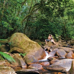 Gorgeous Rivers in the Daintree Rainforest