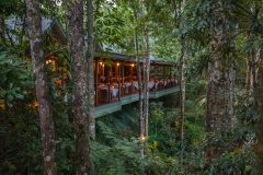Gourmet dining amongst the rainforest at Silky Oaks Lodge, Daintree National Park, Qld