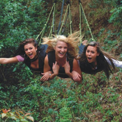 Grab your besties and go Minjin Swinging in Cairns