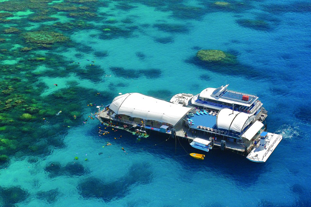 Great Barrier Reef Tour Explore Spectacular Reefs