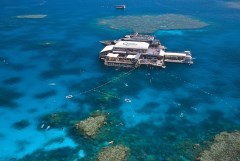 Great Barrier Reef Australia Pontoon Day Trip With Extra Activities For Young Children