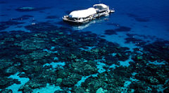 Great Barrier Reef Day Adventure