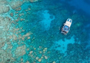 Great Barrier Reef Day Tours Cairns - VIP Captains Club