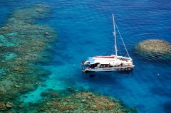 Great Barrier Reef Day Trip Options