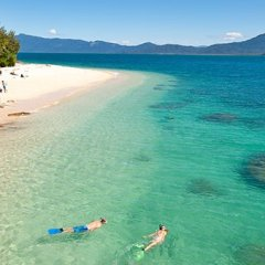 Great Barrier Reef | Fitzroy Island Tour