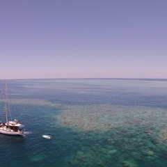 Best Value Great Barrier Reef Liveaboard | 2 Days 1 Night | Ex Cairns