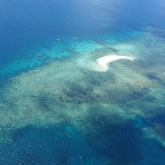 Great Barrier Reef Scenic Helicopter Flight | View of Upolo Cay
