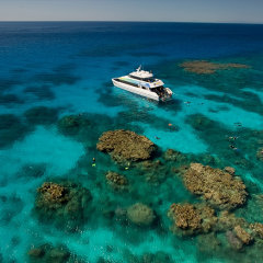 Great Barrier Reef snorkel tours