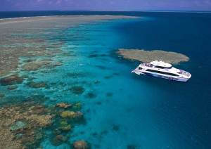 Great Barrier Reef Tours | Cairns dive and snorkel tours