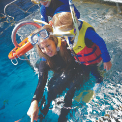 Great Barrier Reef tour for families from Cairns