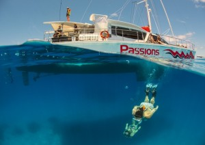 Great Barrier Reef Tours Cairns Queensland Australia