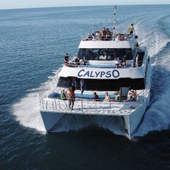 Great Barrier Reef Tour Boat Departing from Port Douglas Queensland Australia