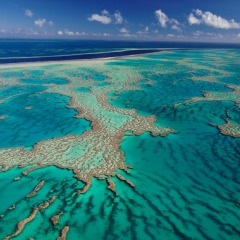 Great Photo Opportunities Of The Great Barrier Reef | 45 Minutes Reef Scenic Flight