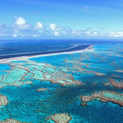 Great Value Cairns Great Barrier Reef Scenic Flights