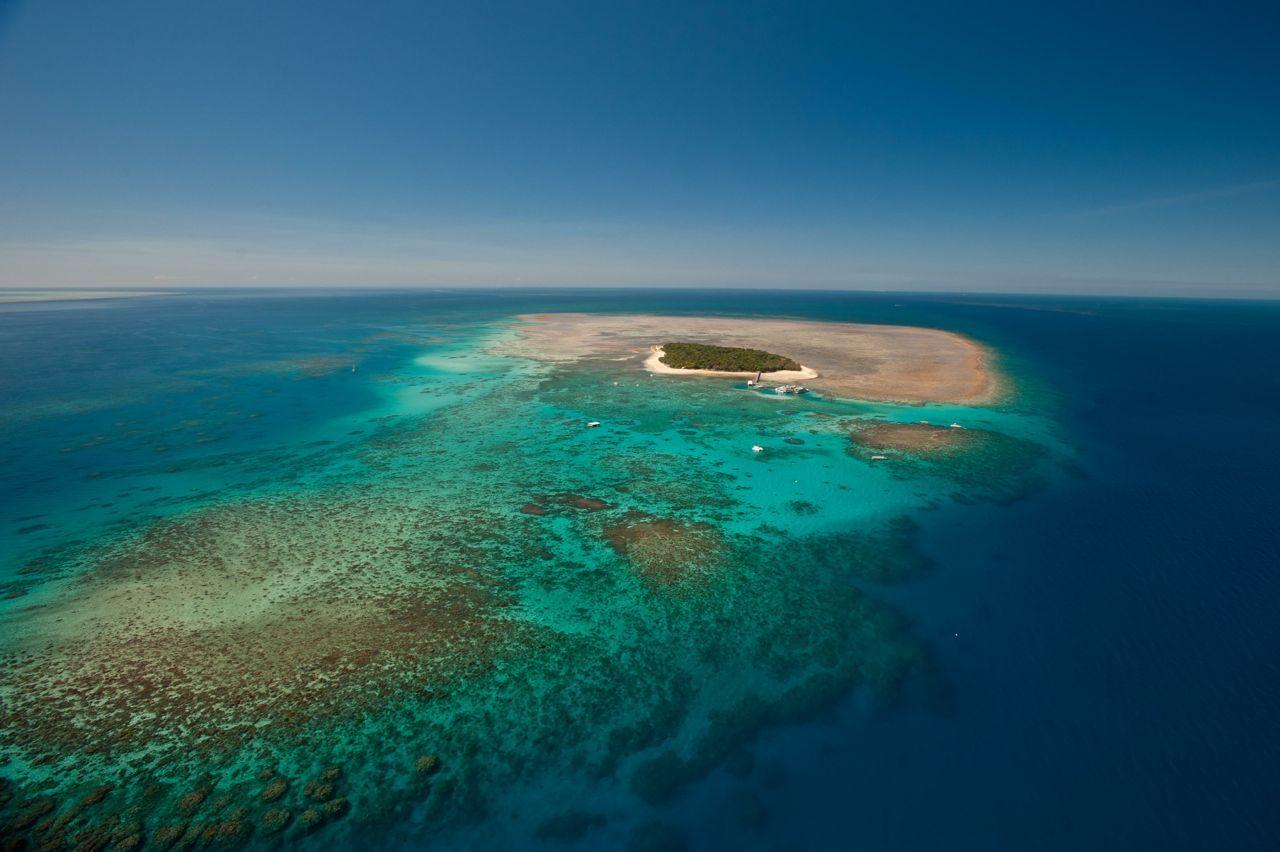 Fitzroy Island Resort Or Green Island Resort