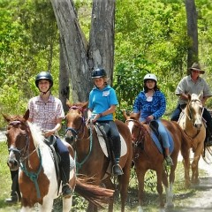 Group Horse Riding on Heli Tour