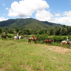 Group Tour - Cairns Horse Riding Tour