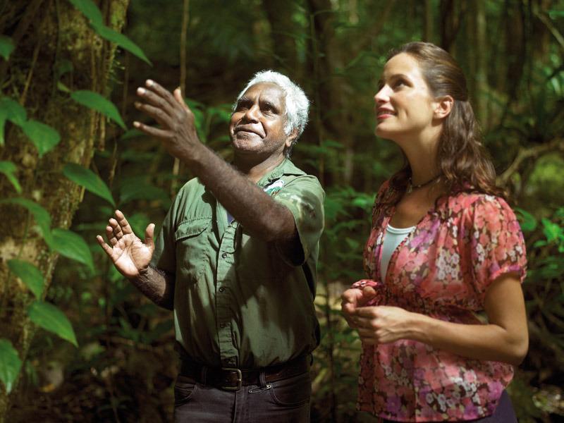 Daintree Walking Aboriginal Tour
