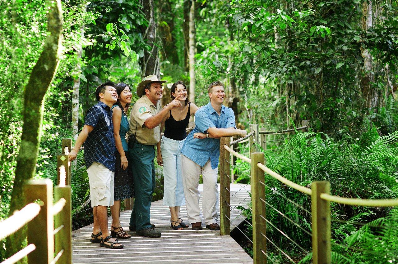 Guided Rainforest Tours on the Skyrail Gondala tour & Cairns Attractions | Kuranda Tour | Skyrail Gondola u0026 Kuranda Train