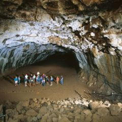 Guided tours inside the Undara Lava Tubes