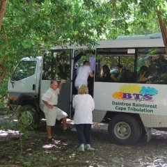 Half Day - Full Day Daintree Cape Tribualtion Rainforest tours