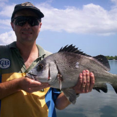 Half Day Fishing Tour | Cairns Inlet In Tropical North Queensland