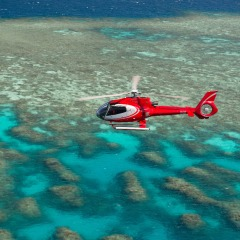 Half Day Great Barrier Reef Trips From Cairns | Fly Cruise Or Cruise Fly | Brand New Boat