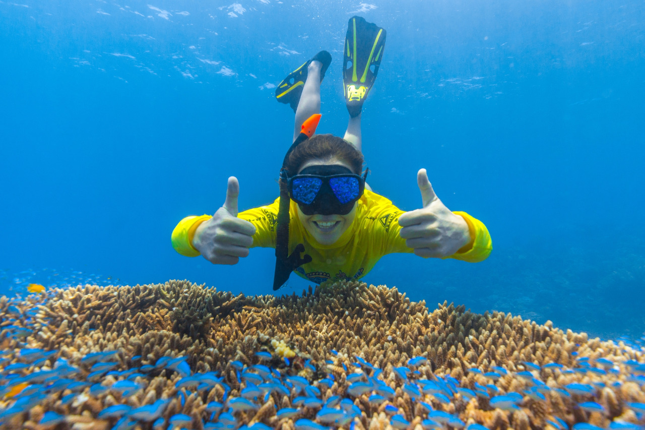 how to get to the great barrier reef from usa