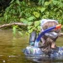 More information aboutDaintree Rainforest Tours | Mossman River Drift Snorkel Tour | Half Day