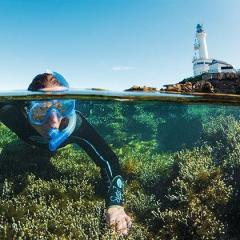 Half Moon Bay & Queenscliff - Enjoy an opportunity to swim with dolphins and snorkel the unique reef.