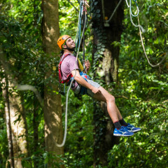 Hanging Out in the Rainforest - - Daintree Cape Tribulation Ziplining Tour