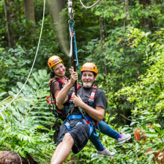 Happy Guests in the Forest Canopy - - Daintree Cape Tribulation Ziplining Tour