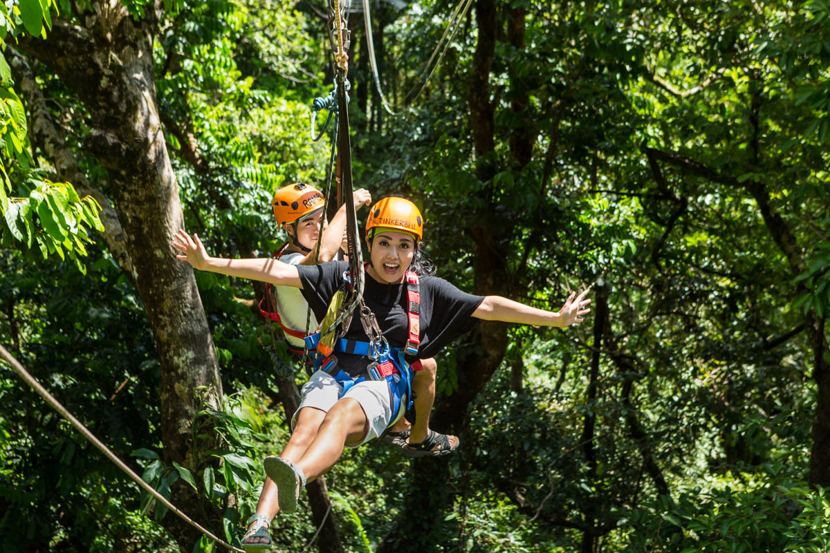 Book Cover Photography Zipline : Cairns tours attractions the port douglas