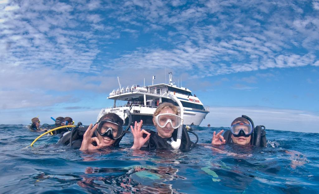 Cairns tours attractions the cairns port douglas tour specialists - Pro dive cairns ...