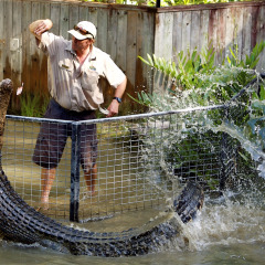 Hartley's Croc Attack Show