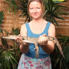 Have your photo taken with a baby crocodile at the Dome in Cairns