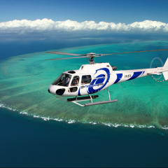 Helicopter Transfer Available Cairns Reef Fishing Private Charter