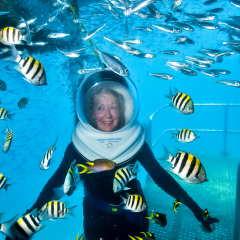 Helmet Diving At Arlington Reef Pontoon | Seawalker