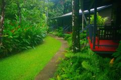 Cabins Nestled In The Rainforest At Heritage Lodge And Spa