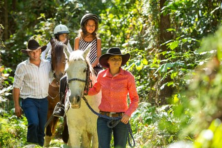 Horse Riding in Cairns