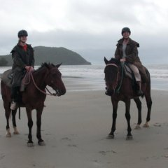 Horse riding Cape Tribulation beach