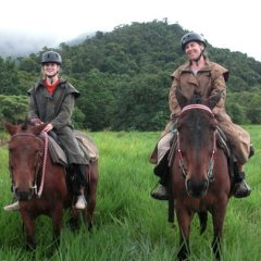 Horses in the Long Grass Cape Trib Horse Riding
