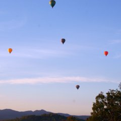 Hot air balloon rides from Cairns or Port Douglas