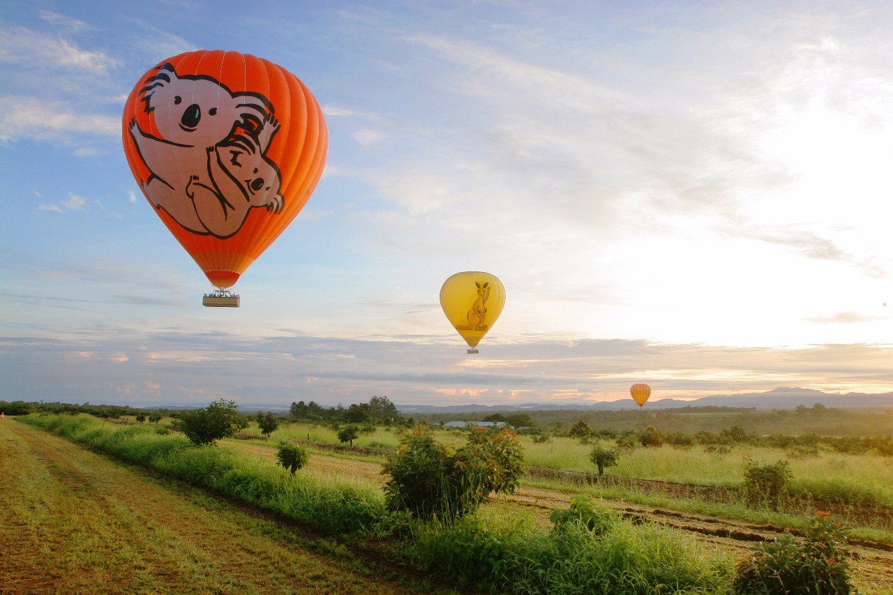 Great Barrier Reef Tour   Hot Air Ballooning   Cairns Combo Package Tours    1 Day