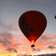 Hot air balloons Cairns and Port Douglas Queensland Australia