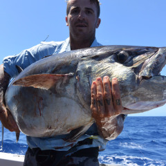 Huge Dogtooth Tuna Cairns Fishing Charter