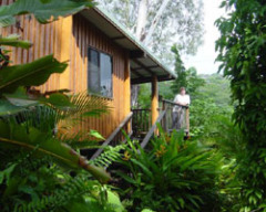 Individual Pole Cabins - Milkwood Lodge Cooktown Accommodation